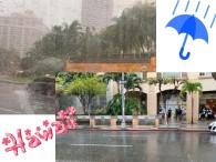 きゃー、凄い雨!!