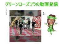 5/24 【グリーンローズフラ】の動画発信!